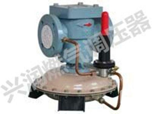 RTJ-※※GK 型系列燃气调压器