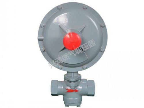 RTZ-※※H 型燃气调压器