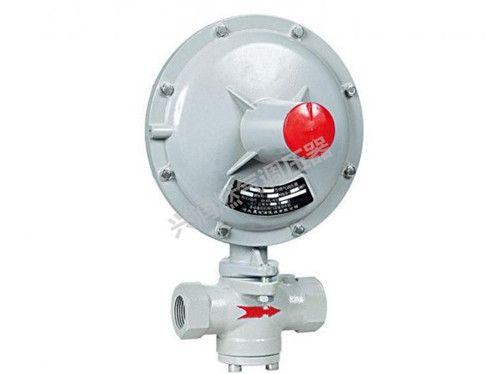 RTZ-※※F 型燃气调压器