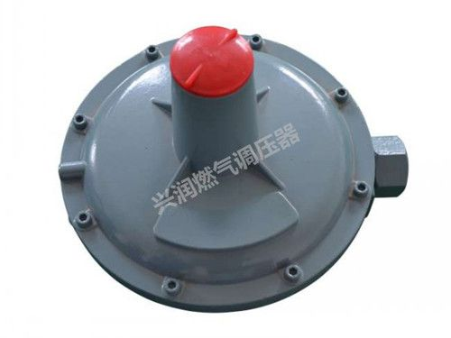 RTZ-※※D 型燃气调压器